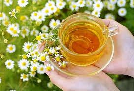 Cara Alami Mengobati Sakit Lambung Secara Tradisional Dengan Bahan Herbal
