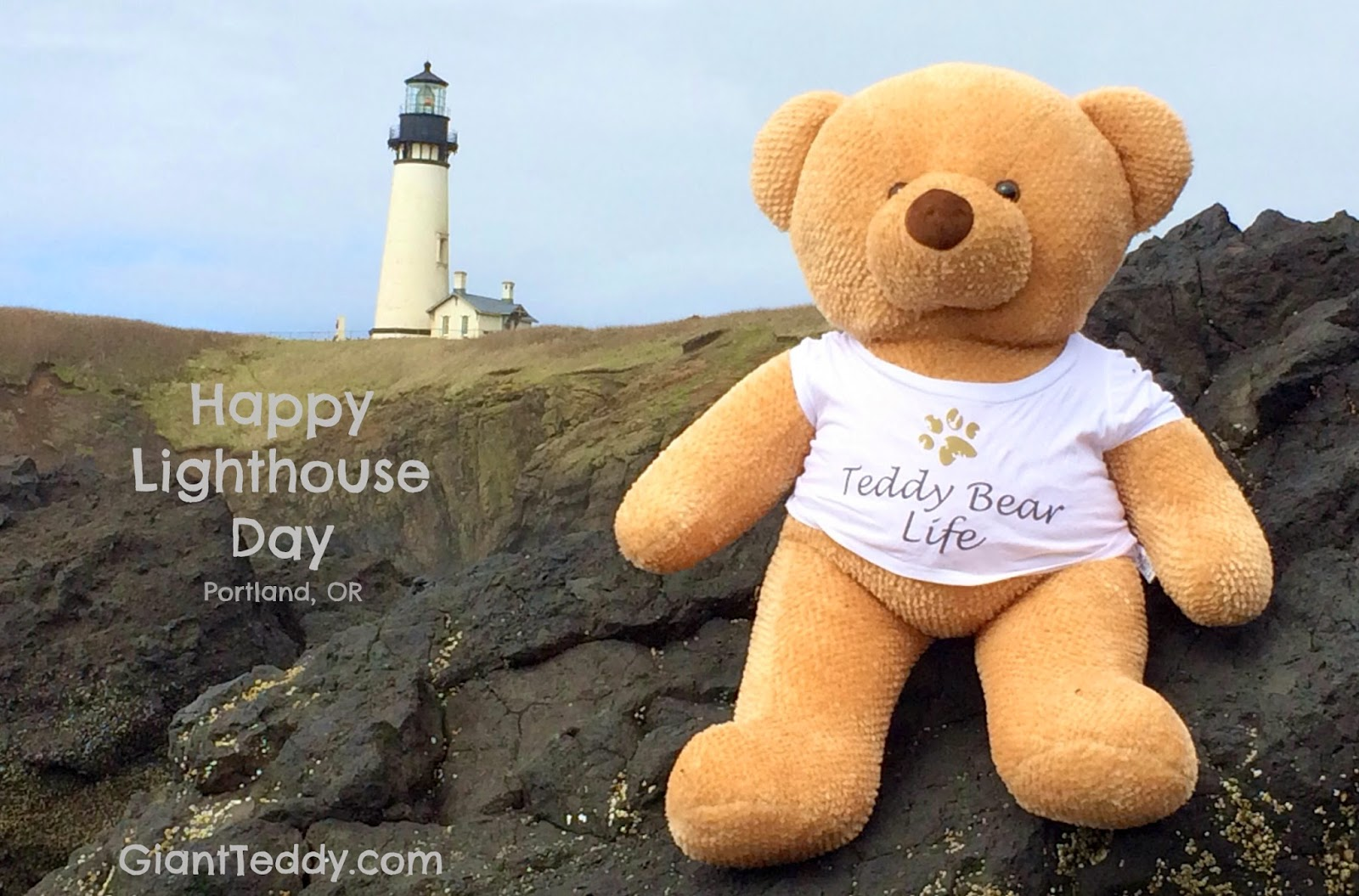 Happy National Lighthouse Day from Giant Teddy