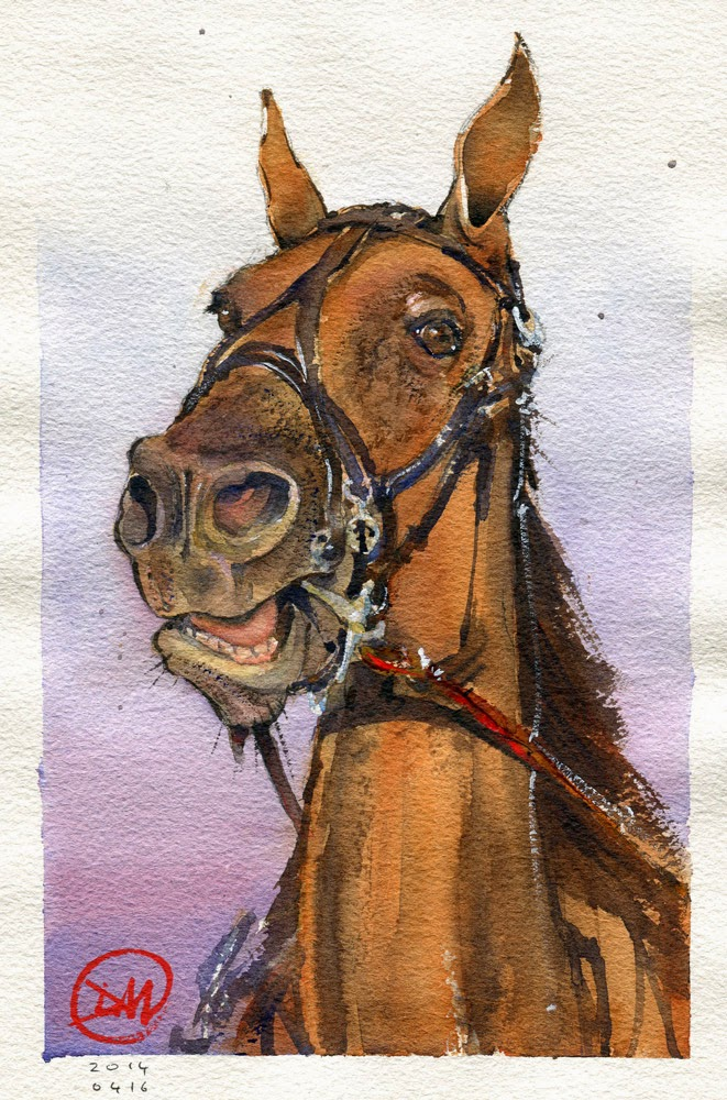 Watercolour horse by David Meldrum