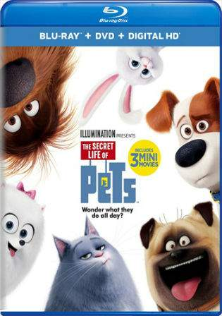 The Secret Life of Pets 2016 Dual Audio 400MB BRRip 480p