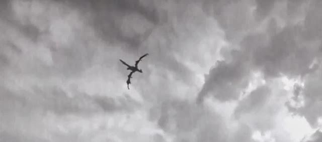 real-dragon-flying-truro-england-hoax.jp