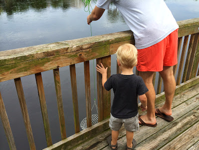 8 Things to Do with Kids in Edisto Island, SC | The Lowcountry Lady