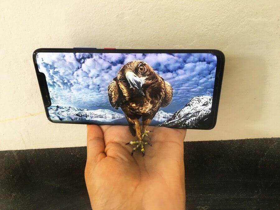 05-Eagle-Iantha-Naicker-3D-Art-www-designstack-co