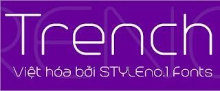 SVN-Trench