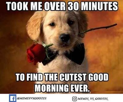 Cutest Good Morning