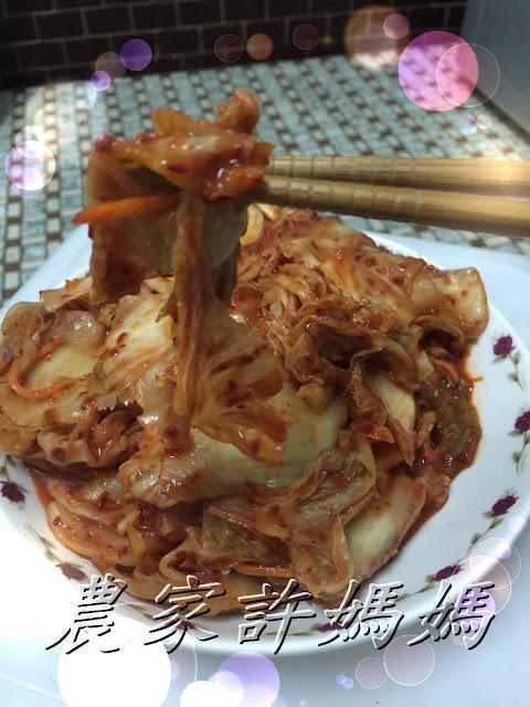 除了基本材料還有獨門醬料的韓式泡菜
