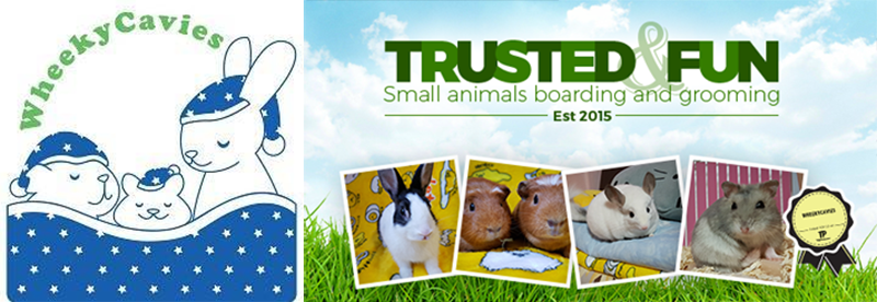 Small animal hotels in Singapore