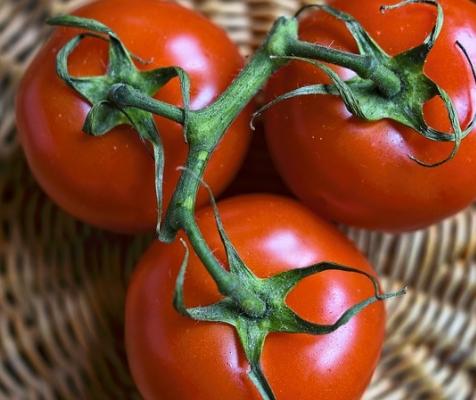 トマト効能 何だろうか。