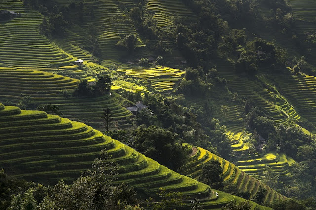 Discovering 10 destinations in Ha Giang has gone is not wanting to return home 4