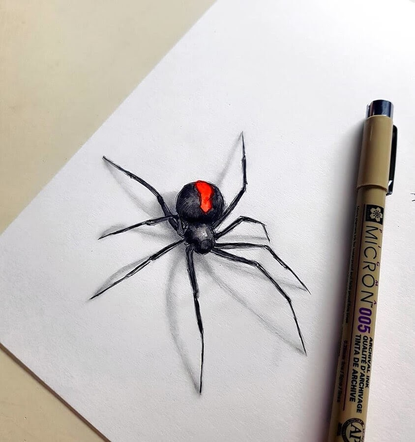 10-Australian-Black-Widow-Kleevia-Animal-Art-www-designstack-co