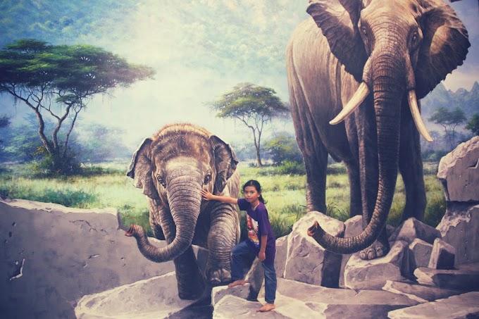 Muzium 3D Art In Paradise, Langkawi
