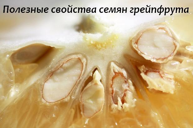 Полезные свойства экстракта косточек грейпфрута