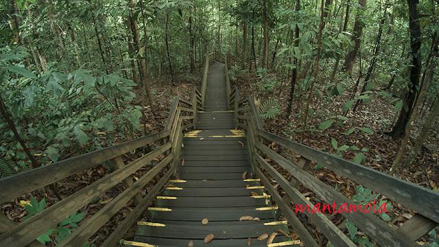 Windsor Nature Park