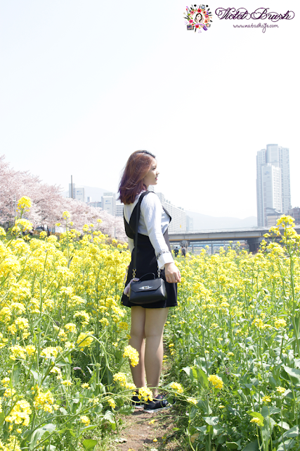purple-spring-cherry-blossom-korea-fashion-makeup-canola-flowers