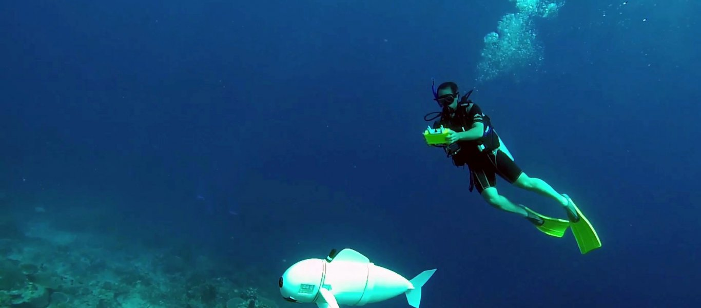 Η SoFi είναι το πρώτο ρομποτικό ψάρι που μοιάζει με πραγματικό και το... «εμπιστεύονται» τα αληθινά! (Video)