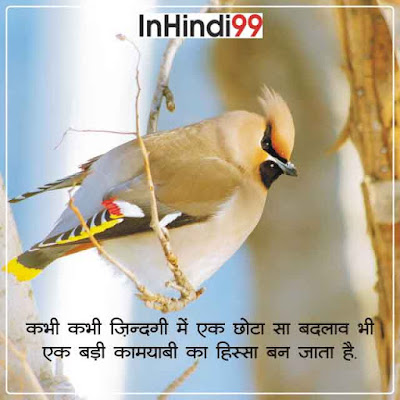 Life Status in Hindi with Images:100+ Best & Latest