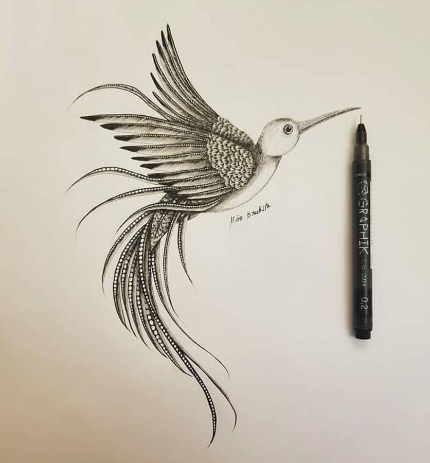 12-Hummingbird-Miro-Bautista-www-designstack-co