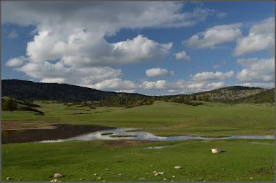 Verdes praderas en los Montes Universales