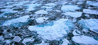 Arctic sea ice melt rate shows climate change urgency. (Image Credit: Pink floyd88 a, via Wikimedia Commons) Click to Enlarge.