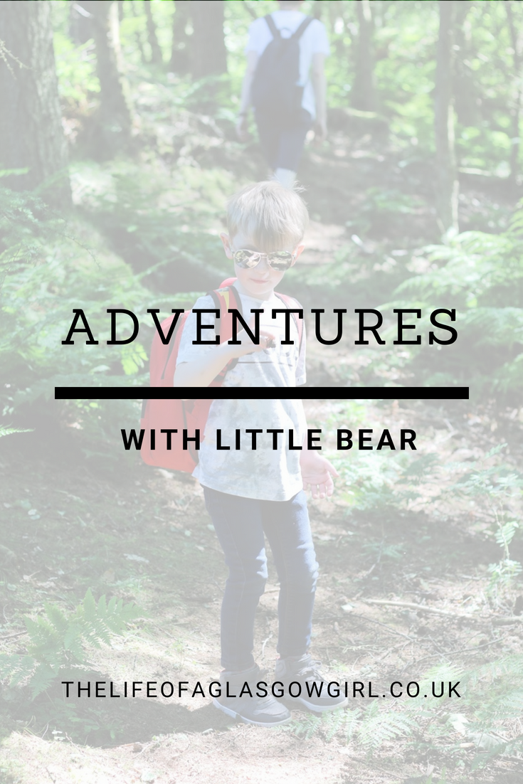 image for pintrest on adventures with little bear