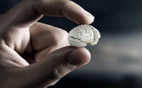 Mini cérebro artificial já existe e é poderoso (Imagem: Reprodução/Fatos Desconhecidos)