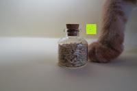 Reis: SET Mini-Fläschchen aus Echtglas mit Korken für Dekoration, Apotheker-Fläschchen / Spundflasche, zur Aufbewahrung kleiner Mengen oder als Puppenfläschchen / Dekoration / Basteln / Korken-Flaschen - Marke Ganzoo (3er SET L (20ml))