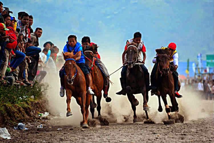 festival pacuan kuda gayo