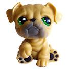 Littlest Pet Shop 3-pack Scenery Bulldog (#107) Pet