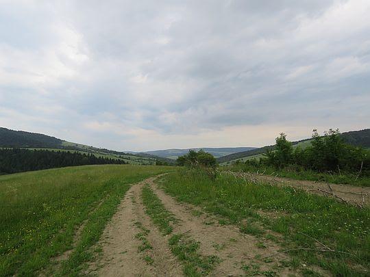 Szlak do doliny Płonki.