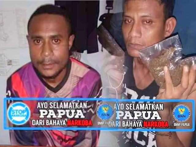 BNN Papua Tangkap Pengedar Ganja di Arso dan Koya
