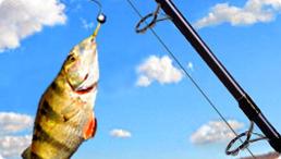 تحميل لعبة صيد السمك بالصنارة