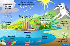 Penyebab dan Dampak Global Warming