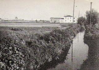 Acequia del Canal de la Infanta a su paso por L'Hospitalet (1971)