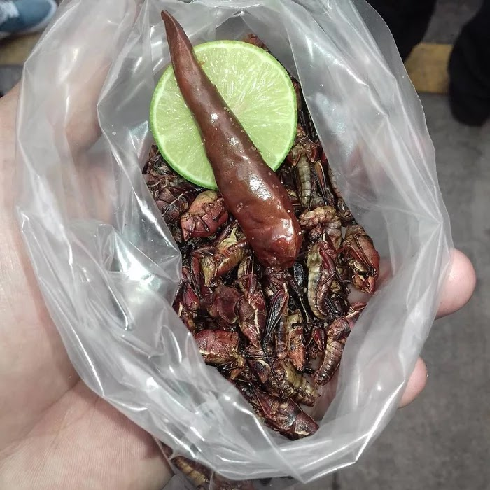 21 Extraordinary Pictures Of National Foods That Seem Uncanny To The Rest Of The World - Chapulines, Mexico