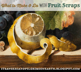 What to Make and Do with Fruit Scraps