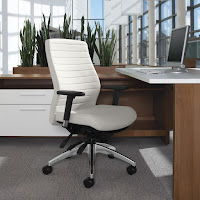 Ergonomic Ribbed Back Office Chair