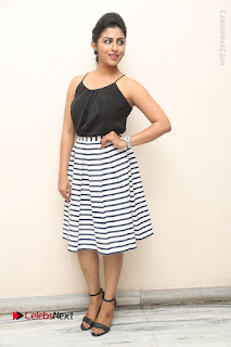 Telugu Actress Kruthika Jayakumar Stills in Short Dress at Intlo Deyyam Nakem Bhayam Success Meet  0264.JPG