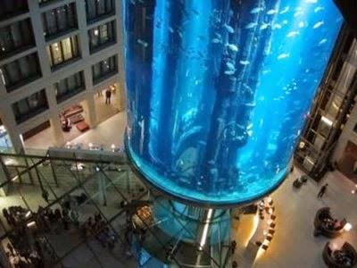 Imagen gigantesco acuario