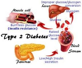 Daun binahong untuk diabetes mellitus dan insipidus daun memang tidak diragukan lagi Daun Binahong Untuk Diabetes & Cara Merebus Resep Obat Luka