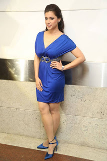 Mannara Chopra in Blue Deep Neck Dress