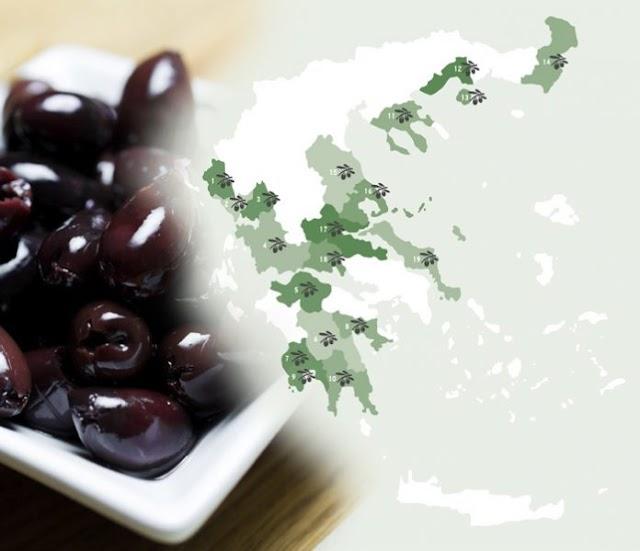 Επιτραπέζια ελιά: Θετικά τα μηνύματα για τη φετινή παραγωγή