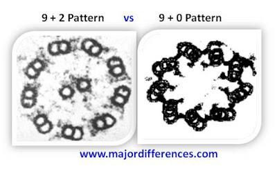 9+2 pattern vs 9+0 pattern