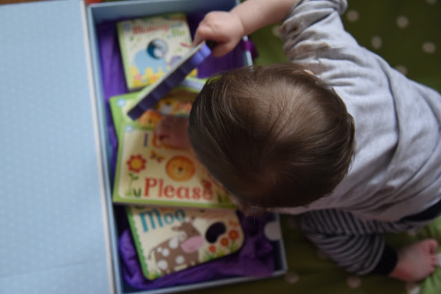 Little Man exploring books