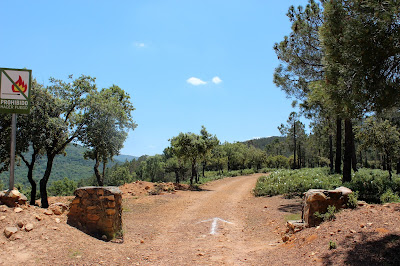 Inicio ruta Hoz de Carboneros