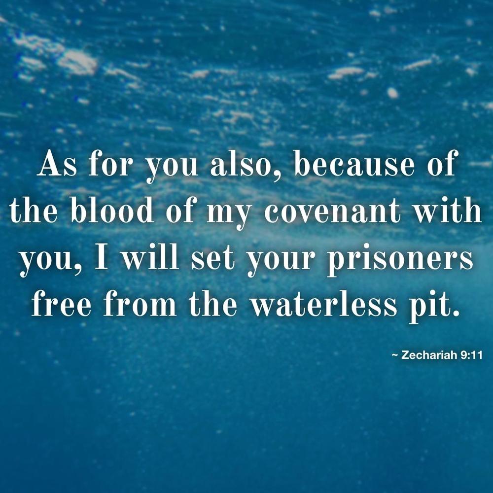 Zechariah 9:9–12