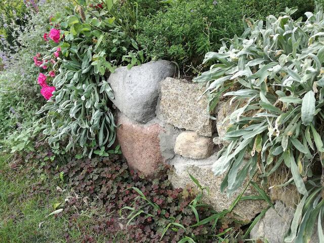 kamień polny w ogrodzie