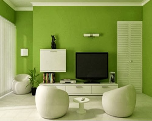 Green And White Combination Colour Desain For Livingroom