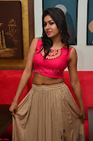 Akshita super cute Pink Choli at south indian thalis and filmy breakfast in Filmy Junction inaguration by Gopichand ~  Exclusive 070.JPG