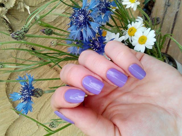 Jerden-Nail-Beauty-Lab-53-отзывы-свотчи