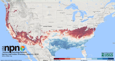 Spring Leaf Index Anomaly, March 6, 2018